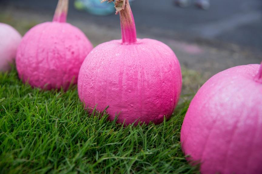 pink pumpkins sitting in grass