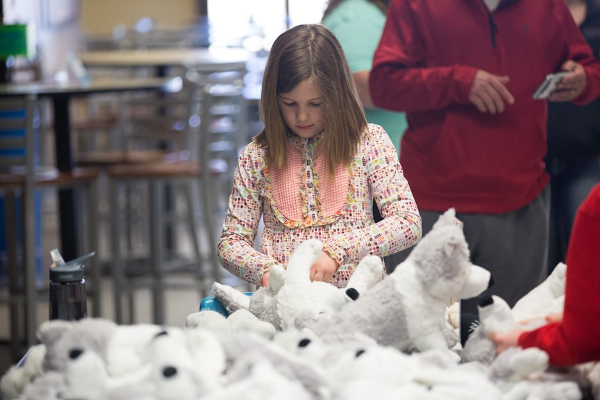 Girl stuffing wolf at Moraine Park Open House