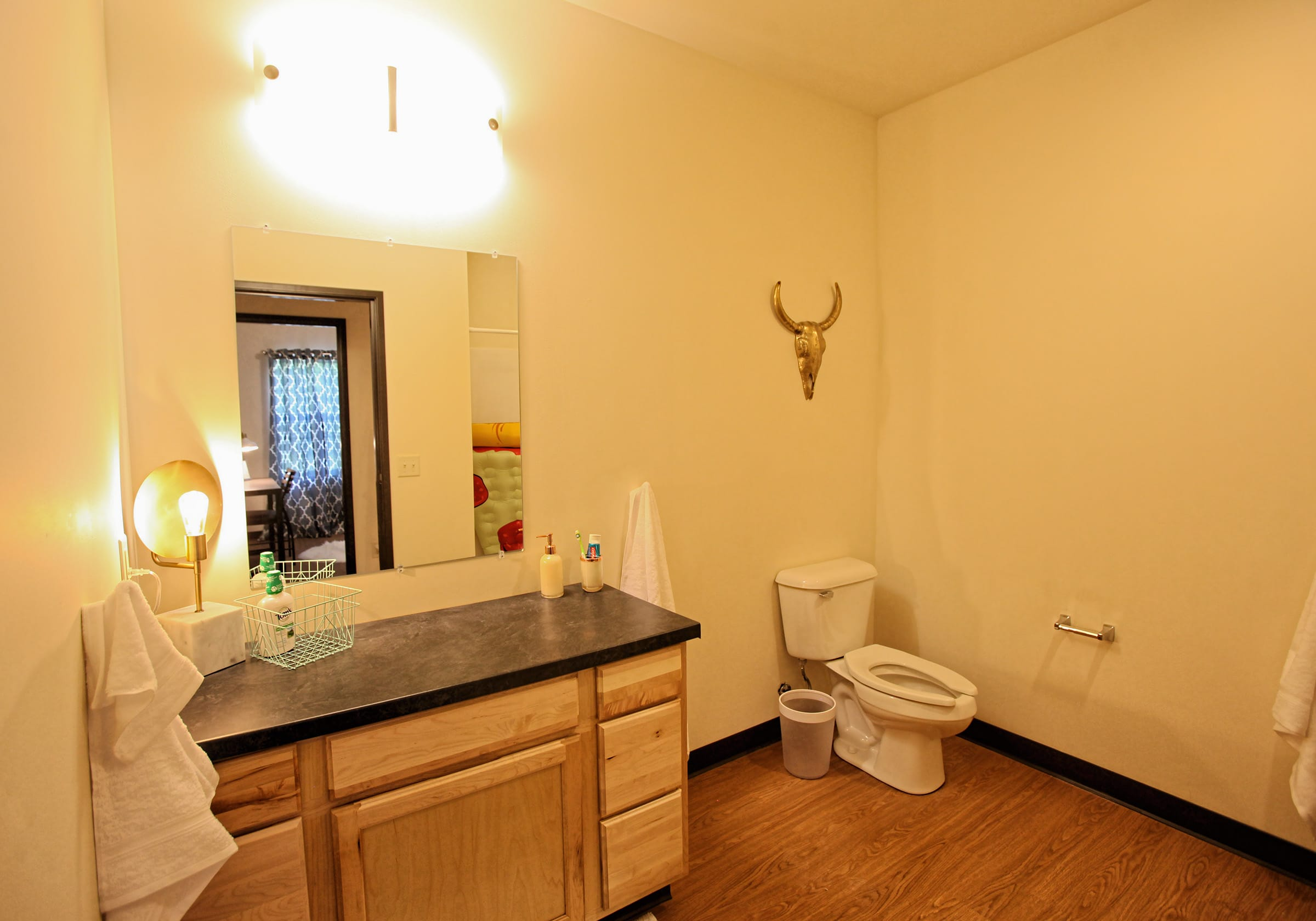 Vue campus bathroom with vanity, toilet and mirrow