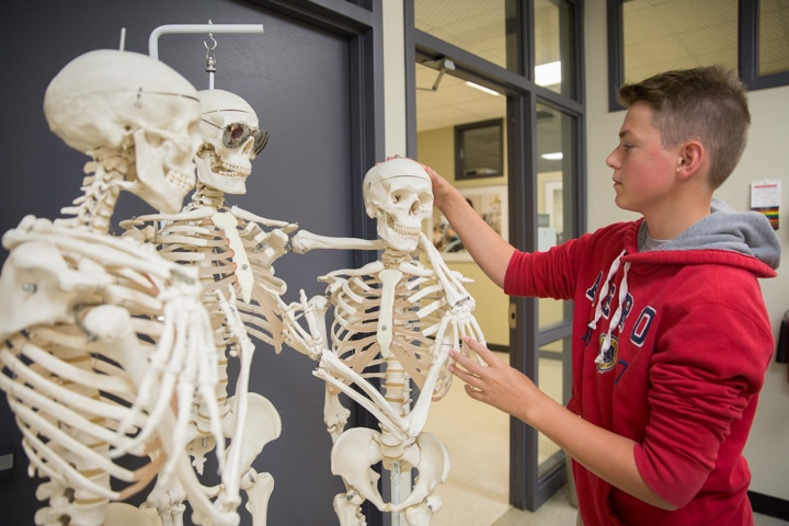 Boy shapes three classroom skeletons during Moraine Park Tech Knowledge College art activity