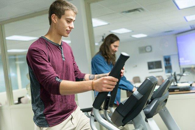 Two males exercising on elliptical machines.