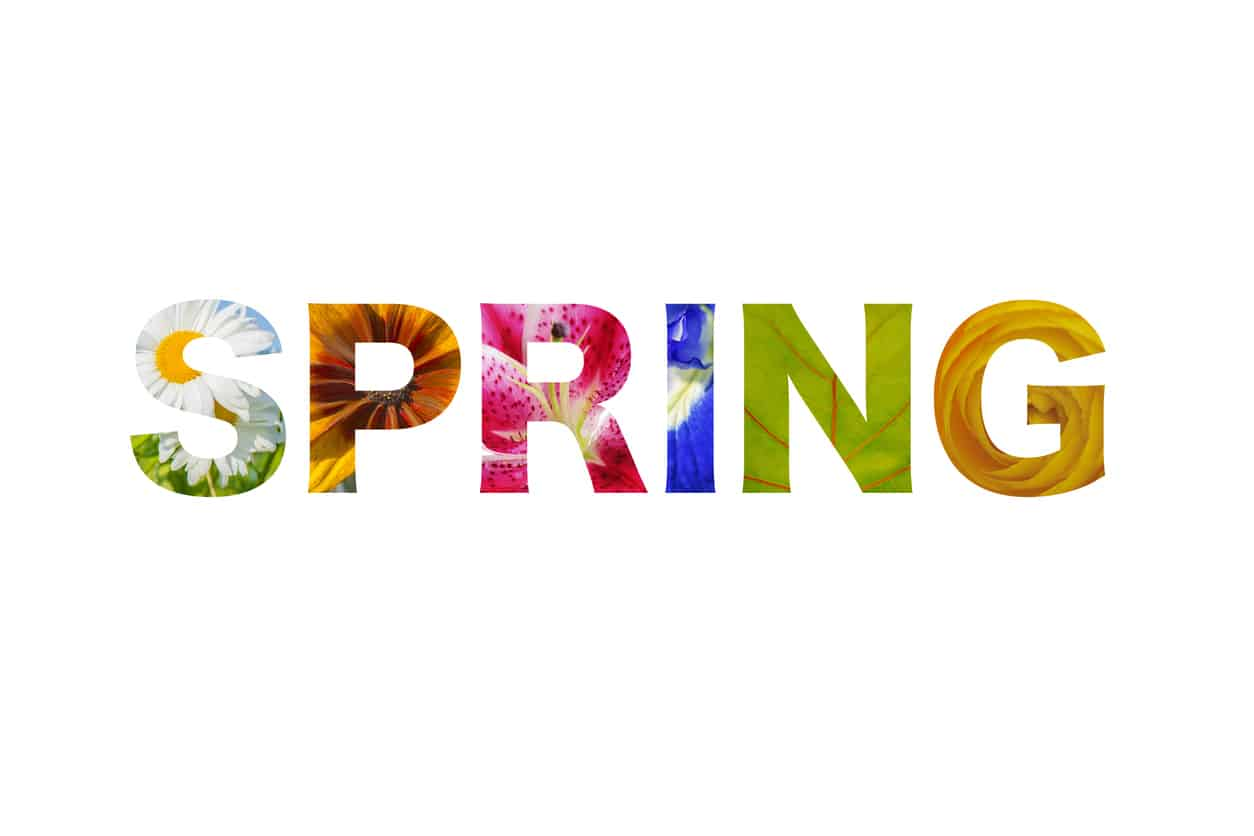 Logo lettering Spring word with flowers and leaves pattern for every letter - isolated over white